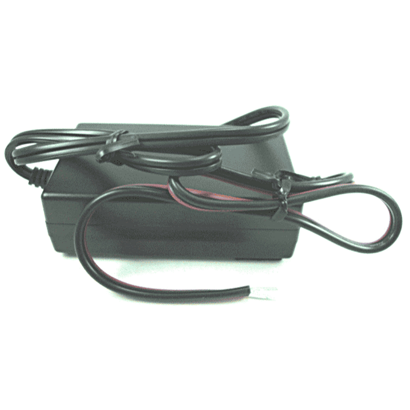 Generac Battery Charger 0G8023