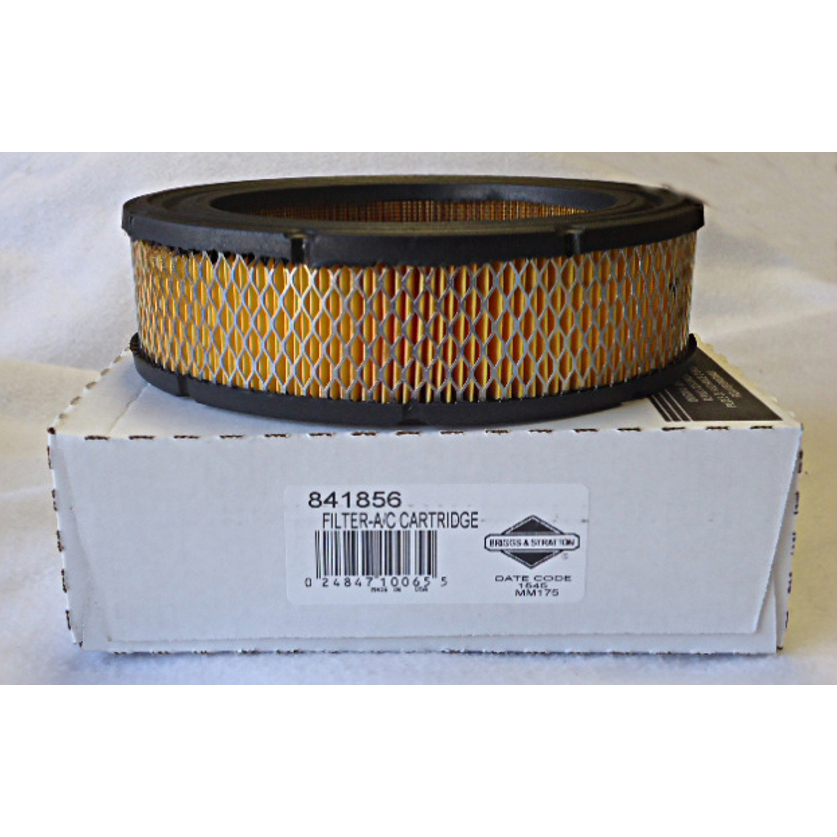 Briggs & Stratton Air Filter 841856