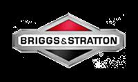 briggs-200